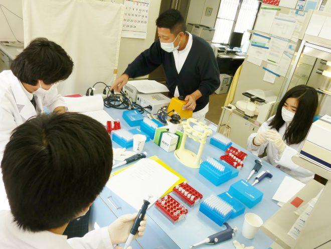 研究科では色水を血液に見立てて疑似DNAの本格的な抽出作業をしました