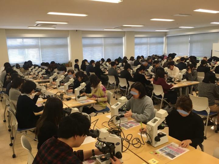 顕微鏡実習風景